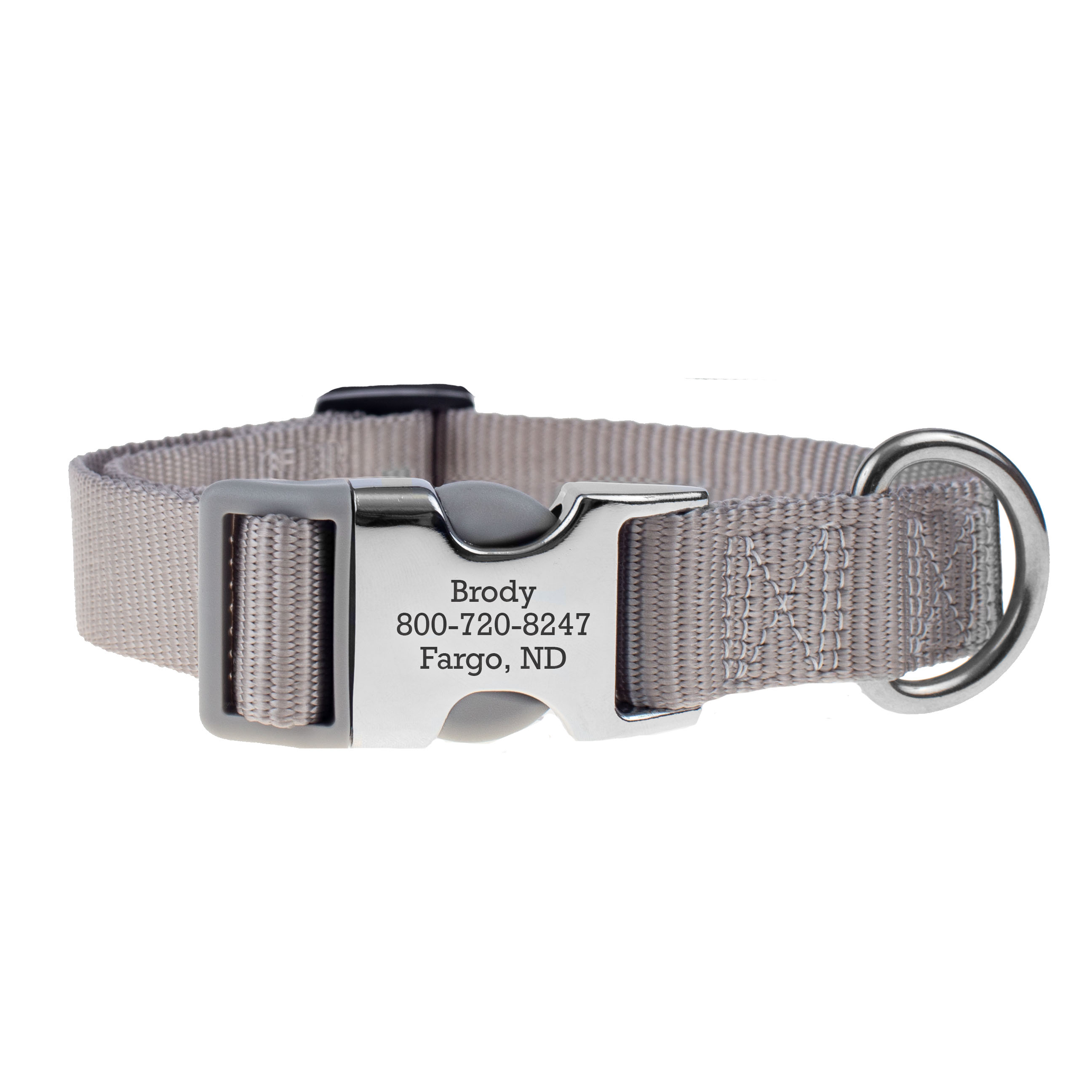 Personalized Buckle Nylon Dog Collar Silver