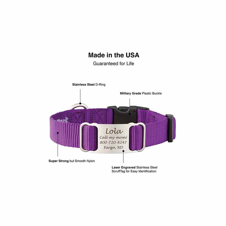 Nylon ScruffTag Personalized Dog Collar Features