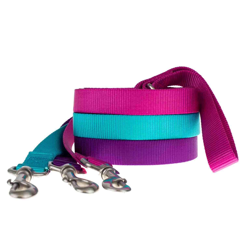 group photo nylon leashes