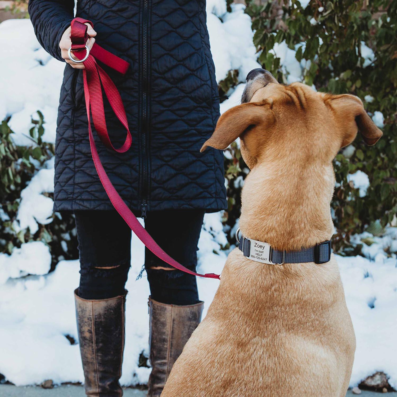 nylon leash lifestyle