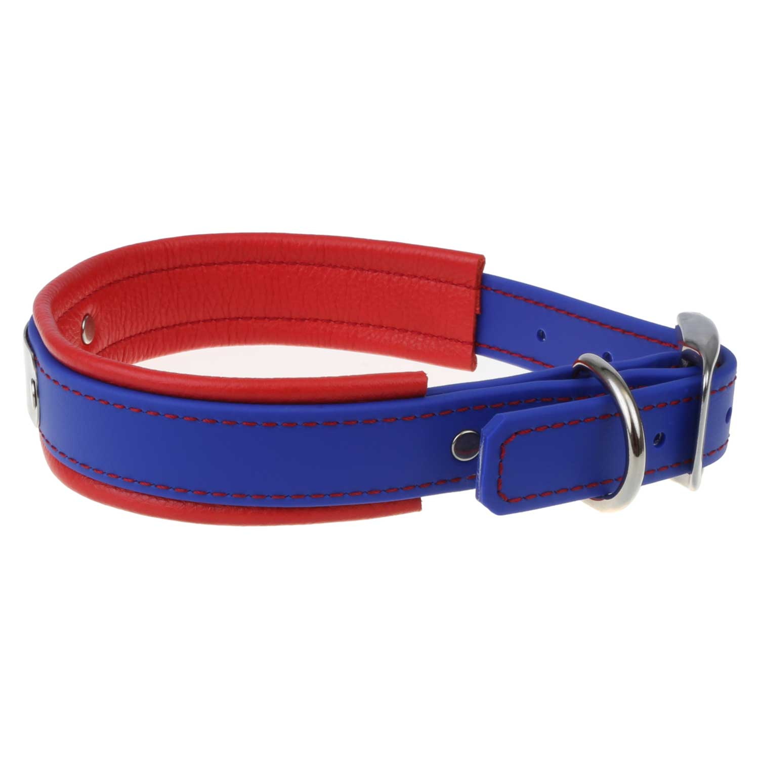 Fusion Artisan Padded Dog Collar with Nameplate Blue with Red Padding Side View