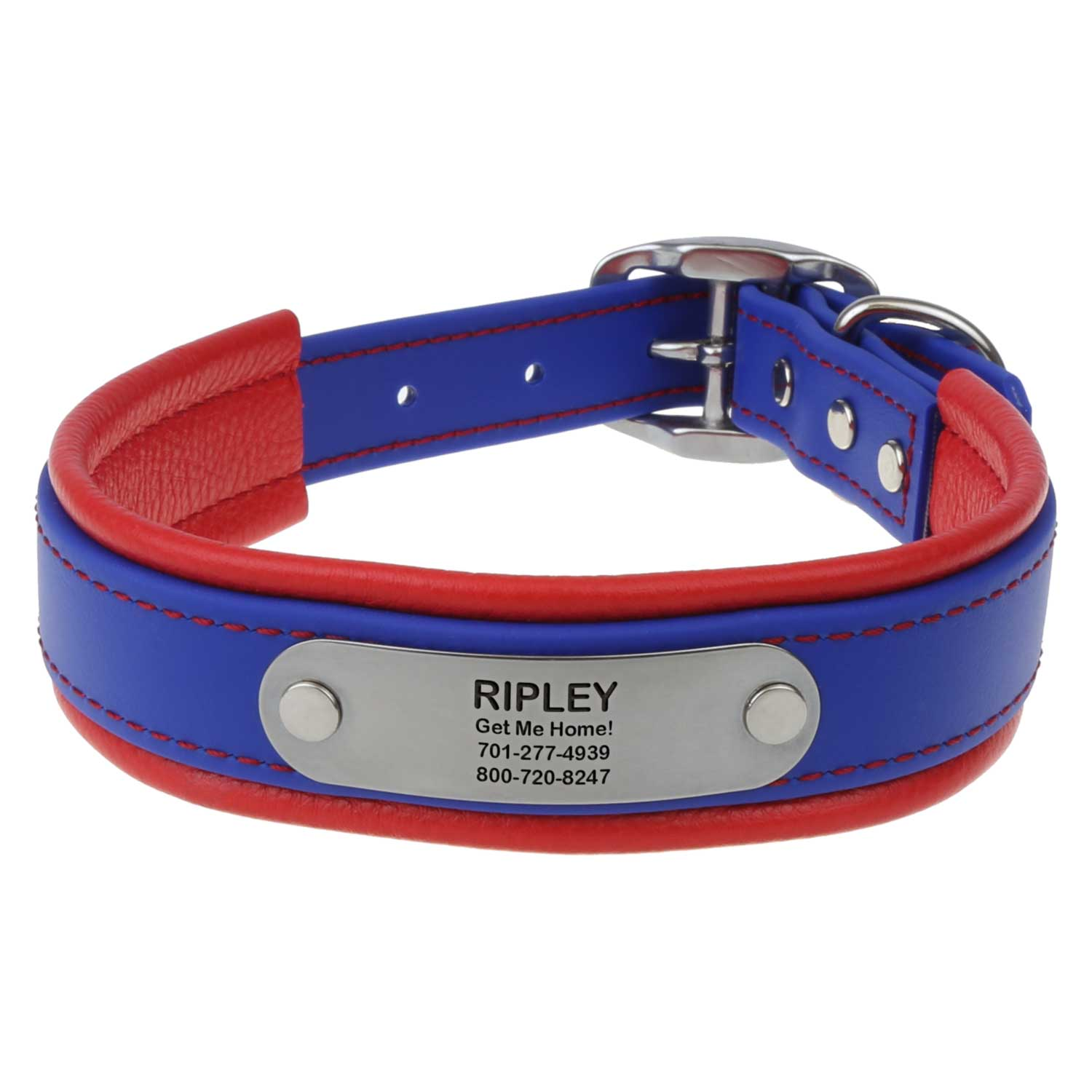 Fusion Artisan Padded Dog Collar with Nameplate Blue with Red Padding Front View