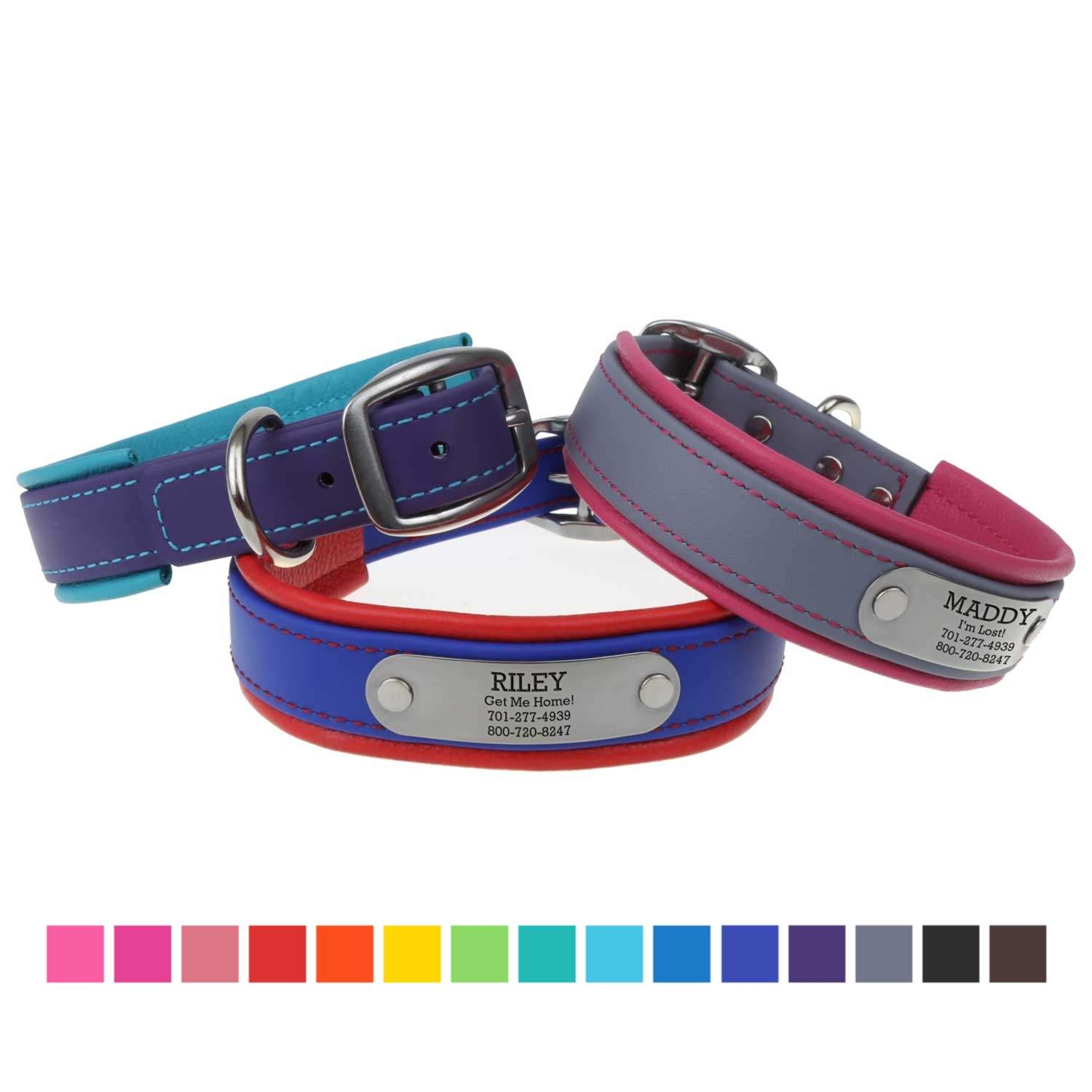 Fusion Artisan Padded Dog Collar with Nameplate - Available in 15 colors