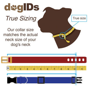 True Sizing