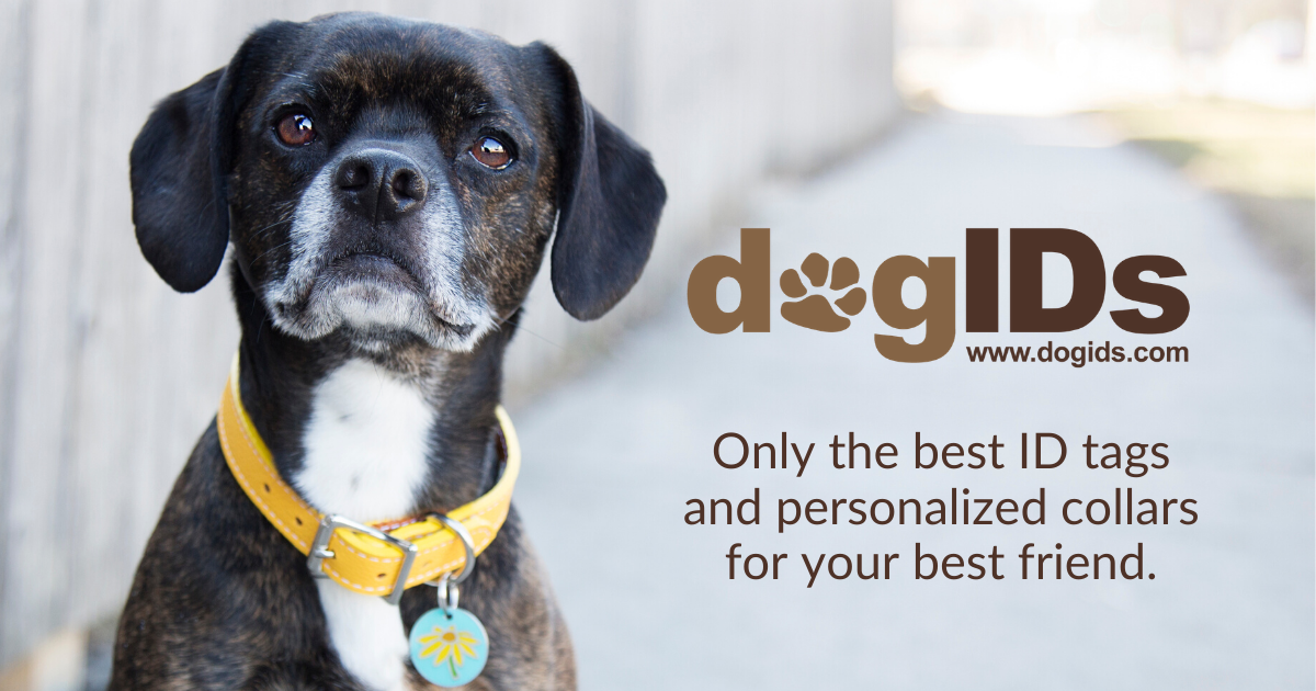 Dog Accessories Custom Dog Collar Personalized Dog Collar SR03P Dog Presents Engraved Dog Collar Custom Dog ID Tag Custom Dog Tag