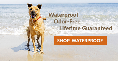 Waterproof Dog Collars