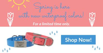Shop Spring Colors!