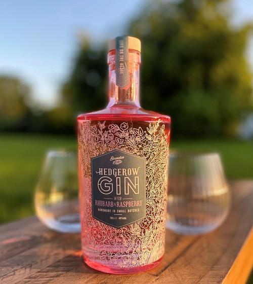 Hedgerow Rhubarb and Raspberry Gin