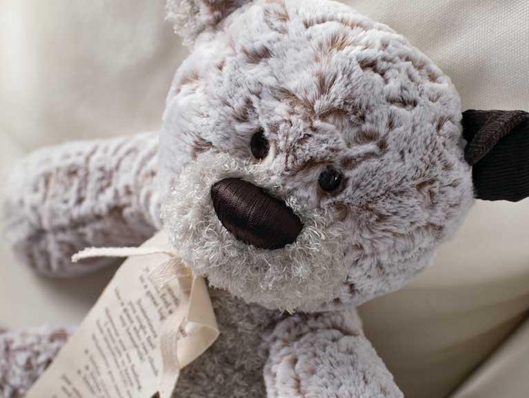 Soft Gray Bear