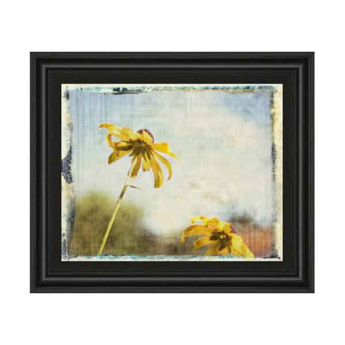 BLACKEYED SUSAN II 22x26