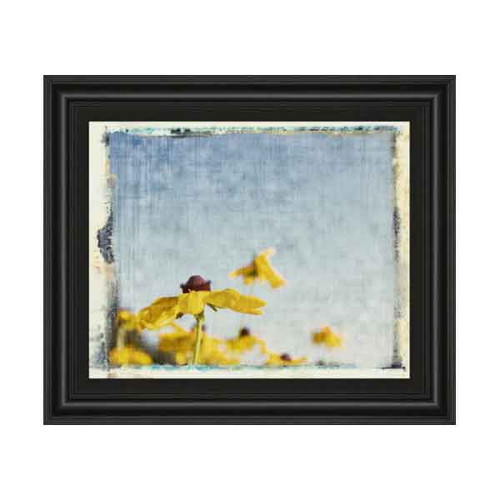 BLACKEYED SUSANS I 22x26