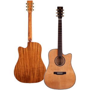 Stretton Payne Professional Signature Series, Solid Top Dreadnought Acoustic Guitar, Full Size, Steel String, Solid Cedar Top, ADS-85C