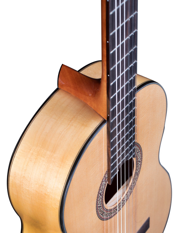 Stretton Payne Signature Series, Classical Nylon String Acoustic Guitar, Full Size, 39 inch, Solid Spruce Top, GSC-200