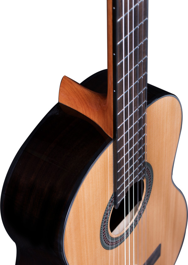 Stretton Payne Signature Series, Classical Nylon String Acoustic Guitar, Full Size, 39 inch, Spruce Top, C-46