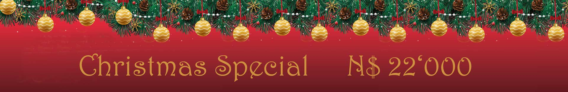 christmas-special.jpg