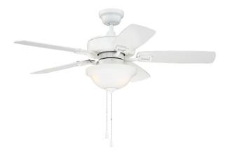 42'' Fan w/Blades & LED Light Kit (Express Install) (20|TCE42W5C1)