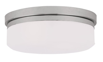 2 Light CH Ceiling Mount or Wall Mount (108 7392-05)