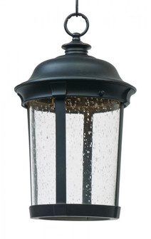 Dover LED-Outdoor Hanging Lantern (55029CDBZ)