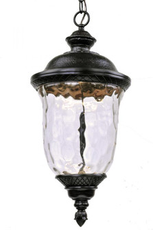 Carriage House LED-Outdoor Hanging Lantern (55427WGOB)