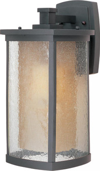 Bungalow LED E26-Outdoor Wall Mount (65654CDWSBZ)