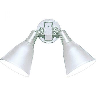 Two-Light Adjustable Swivel Flood Light (149|P5203-30)