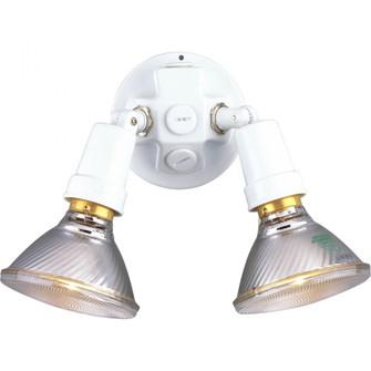 Two-Light Adjustable Swivel Flood Light (149|P5207-30)