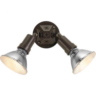 P5212-20 2-150W PAR 38 LAMP HLDR (149|P5212-20)