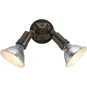 Two-Light Adjustable Swivel Flood Light (149|P5212-20)