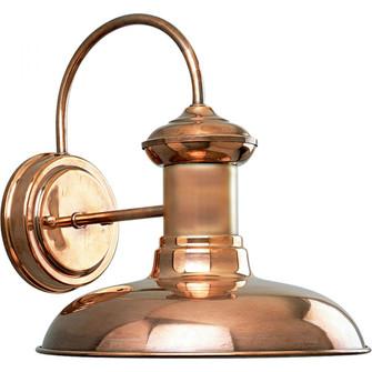 Brookside One-Light Wall Lantern (149 P5722-14)