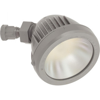 LED Swivel Security/Flood Light Head (149|P6342-82-30K)