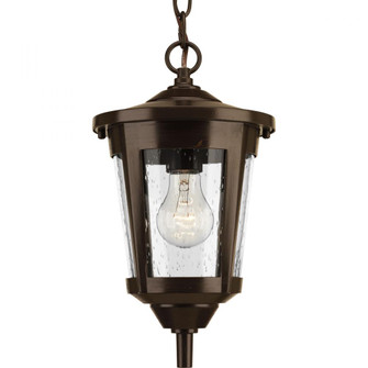 East Haven Collection One-Light Hanging Lantern (149|P6525-20)