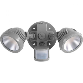 Two-Light Security/Flood Light With Motion Sensor (149|P6341-82-30K)