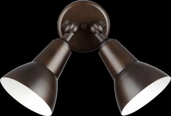 2LT PAR LAMP FLOODLGT -OB (83|690-2-86)