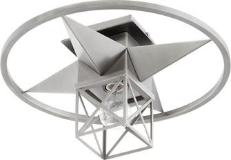 "STAR CAGE 17"" CMNT - STN (83 3107-17-65)"