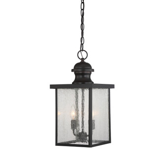 Newberry Hanging Lantern (128 5-603-13)