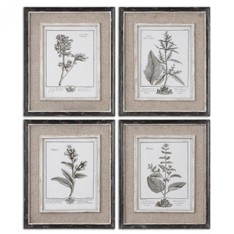 Uttermost Casual Grey Study Framed Art Set/4 (85|32510)
