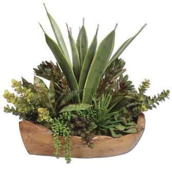 Uttermost Salar Succulents In Teak Bowl (85|60119)