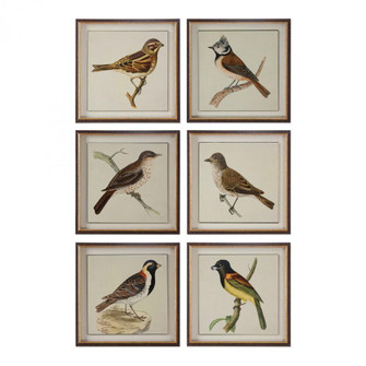 Uttermost Spring Soldiers Bird Prints, S/6 (85|33627)