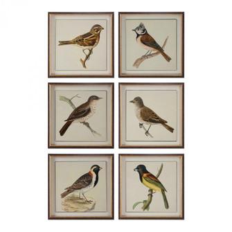 Uttermost Spring Soldiers Bird Prints, S/6 (85 33627)
