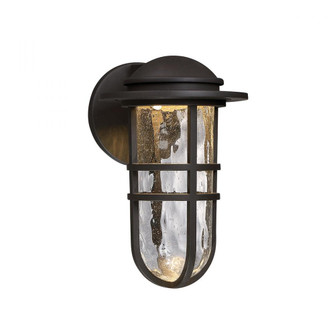 Steampunk LED Outdoor Sconce (16|WS-W24513-BZ)