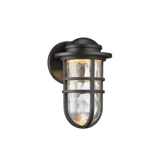 Steampunk LED Outdoor Sconce (16|WS-W24509-BZ)