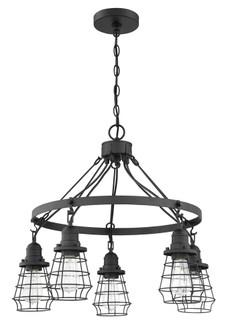 5 Light Chandelier (20 50625-FB)