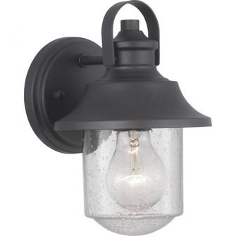 Weldon Collection One-Light Small Wall Lantern (149 P560119-031)