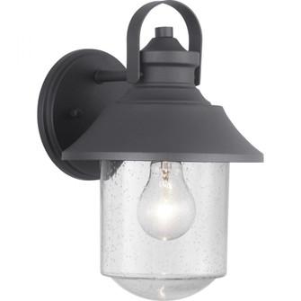 Weldon Collection One-Light Medium Wall Lantern (149 P560120-031)