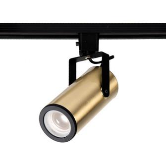LED2020 Silo X20 Beamshift Track Head (16|J-2020-930-BR)