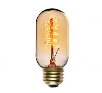 40W Incandescent E26 T14 120V Clear Glass Bulb (19|BI40T14E26CL120V)