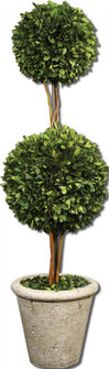Uttermost Two Sphere Topiary Preserved Boxwood (85|60106)