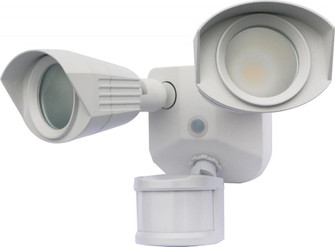 LED DUAL HEAD SECURITY LIGHT (81|65/217)