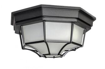 Crown Hill LED 1-Light Outdoor Ceiling Mount (19|67920BK)