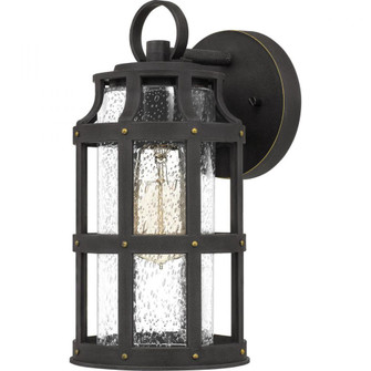 Lassiter Outdoor Lantern (26|LAS8406PN)